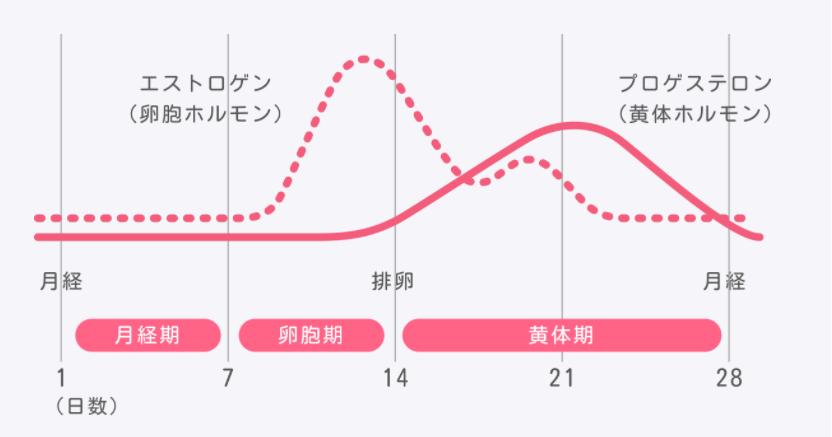 PMSホルモングラフ